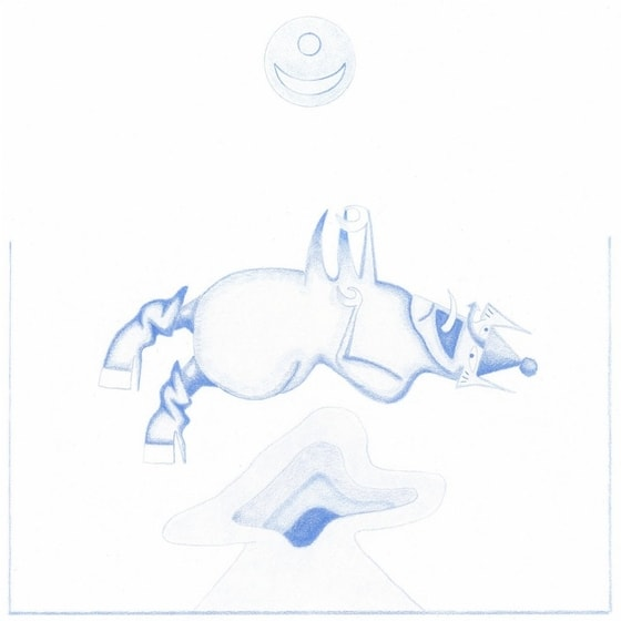 Devendra Banhart - Ape In Pink Marble, CD